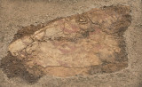 Antalya museum december 2012 6783.jpg