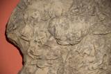 Antalya museum december 2012 6795.jpg