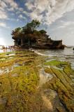 Tanah Lot at Low tide