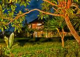 Villa & Rice field at Tepi Sawah