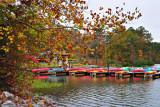 Fall at the Marina