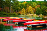 More Canoes Resting