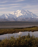 Mt McKinley Reflected in pond vertical.jpg