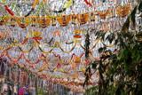 Decorations on Mullackal Road, Alappuzha, Kerala
