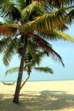 Hammock time, Coconut trees, Marari beach, Mararikulam, Kerala