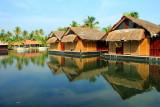Vayalar, Vembanad Lake, Kerala