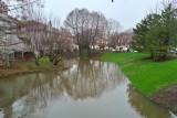 Rising flood, Palatine