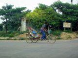 Rickshaw - DLF citys only public transport, Gurgaon