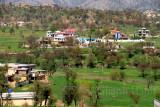Village Treeyan