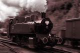 Steam Train in lithe copy4Pbase.jpg