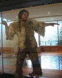 recontruction of Cro Magnon man