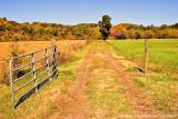 Acreage In Autumn