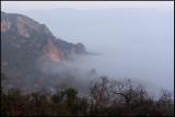Dawn near river Segre