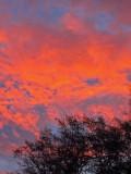20 Morning sky 6453