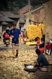 Maize Village #2