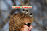 Le nid_modifié-1.jpg