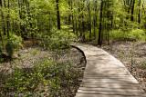 Delhaas Woods Trail