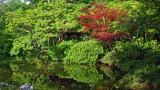 Japanese Garden-Ft Worth Arboretum