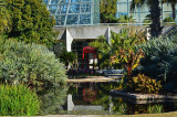 Lucile Halsell Conservatory