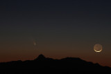 Comets Panstarrs and Ison
