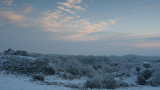 Wintry scene - vintermorgen