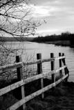 3 January: The Lake
