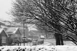 14 January: Snow