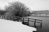 21 January: Cold Lake