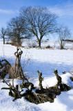 26 January: Blue Sky