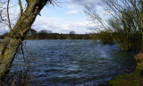 10 March: Pebley Reservoir