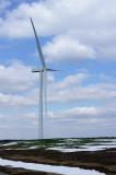 29 March: Wind Turbine