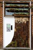 7 April: Tree or Door?!