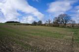 18 April: My Fields Again