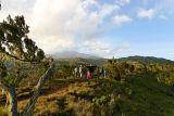 Maundi crater walk