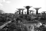 2012 - Singapore - L1000304
