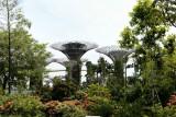 2012 - Singapore - L1000597