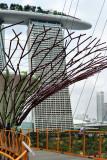 2012 - Singapore - L1000602