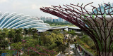 2012 - Singapore - L1000603