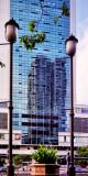 2008 - Singapore - DS080906173520