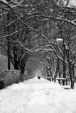 Cold Silence 02