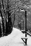 Cold Silence 03
