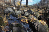Le ruisseau Mantha