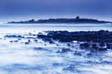 Mutton Island 2