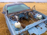 Old car B249174