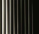 Shadows B255263BWi