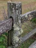Fence A014737