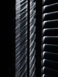 Shadows B285339BWi
