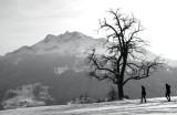 Walking in snow ...