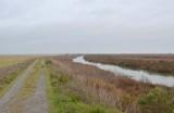 Long Flat Levee