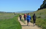 Group Around the Hill